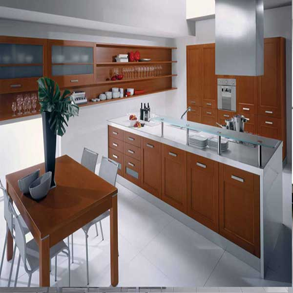 A stainless steel - wooden themed kitchen